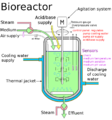 Real life bioreactor.png