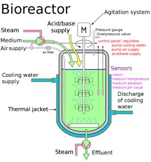 Bioreactor Redesign Dramatically Improves Yield