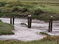 Remains of footbridge - geograph.org.uk - 955880.jpg