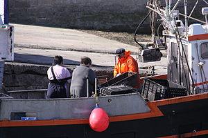Retour de la pêche à la seiche du fileyeur Jason IV (27).JPG