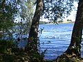 Rezerwat przyrody Żurawie Błota (05).jpg
