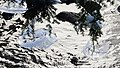Ricketts Glen State Park winter hike (43427902750).jpg