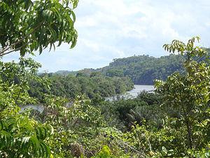Paru River - Image: Rio Paru