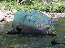 Rio Turtle Rio WV 2005 08 21 13.JPG