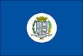 Rio das Pedras Flag.PNG