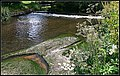 River Bollin (19090294576).jpg