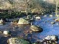 River Tavy - geograph.org.uk - 300105.jpg