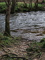 River Teign - geograph.org.uk - 363819.jpg