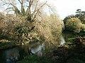 River Wensum from Sweetbriar Road - geograph.org.uk - 79846.jpg