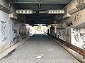 Road tunnel near Kyushu Sangyo University 2.jpg