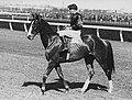 Rogilla 1933 VRC Melbourne Stakes Flemington Racecourse Jockey Darby Munro Trainer Les Haigh.jpg