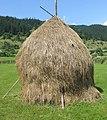 Romanian hay 2.jpg