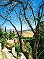 Ronda, Andalucia (48794584017).jpg