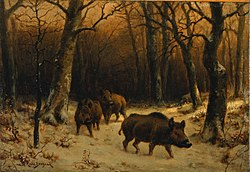 روسا بونهور: Wild Boars in the Snow