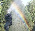 Rousse Hydra Rainbow.jpg