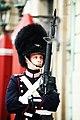 Royal Life Guard, Amalienborg Palace, Copenhagen, Denmark (7103061123).jpg