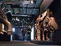 Ruhrmuseum - 12 Meter Ebene - Wollnashorn100526.jpg
