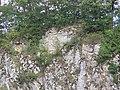 Ruine Hausen 06.jpg