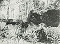 Ruins of Medjing Holding Cell, Kota Jogjakarta 200 Tahun, plate before page 7.jpg