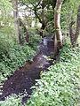 Ruisseau des sources.jpg