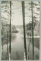 Runebergin kumpu, Takaharju, Lammasharju, Lahti Takaharjun ja Lammasharjun välissä, Th. Sunell 1920s–1930s PK0213.jpg