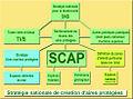 SCAP schéma.jpg