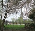 Salisbury Cathedral across water meadows - geograph.org.uk - 1261503.jpg