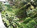 SanPascual,Batangasjf9118 06.JPG