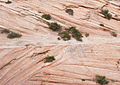 Sandstone Cross-bedding (5930953092).jpg