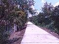 Santa Maria and Bocaue area - panoramio (4).jpg
