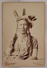Scout Yellow Dog by Frank Jay Haynes, c1883.jpg