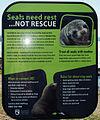 Seals napier.jpg