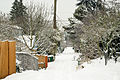 Seattle alleyway in snow 2008.jpg
