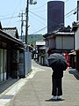 Setouchi Triennale -Teshima Yokoo House (豊島横尾館)横尾忠則-永山裕子 DSCF2288.JPG