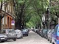 Sheinovo Street.jpg