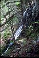 Shenandoah National Park SHEN4179.jpg