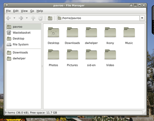 Sidux file manager.png