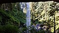 Silver Falls State Park, August 2017 - 28.jpg