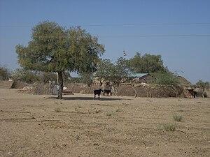 Dhani (settlement type) - Image: Sitadhani