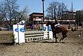 Skokové závody Brno Veveří (089).jpg