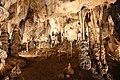 Sloupsko-šošůvské-jeskyně-interiér2018Eliščina-jeskyně3.jpg