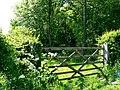 Small Thorns Plantation - geograph.org.uk - 183434.jpg