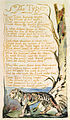 Songs of Innocence and of Experience, copy B, 1789, 1794 (British Museum) object 35 The Tyger.jpg