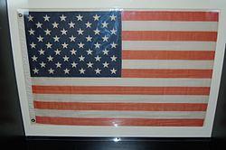 Space flight flag