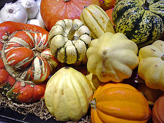 Winter squash - An assortment of winter squashes