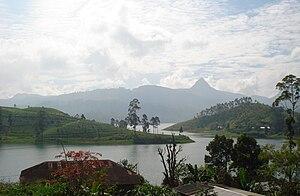 Sri Paada1