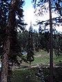 Srinagar - Pahalgam views 77.JPG