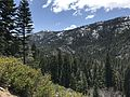 Stanislaus National Forest, Pinecrest, United States May 07, 2017 015207.jpeg