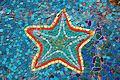 Starfish (6807423850).jpg