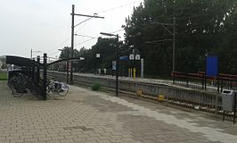 Station Waddinxveen.jpg